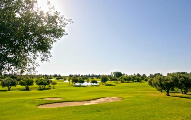 golf_fes