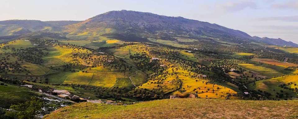 Montagnes Moyen Atlas